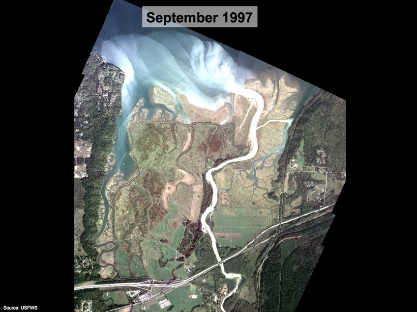Nisqually Delta Restoration
