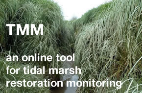 Tidal Marsh Monitoring